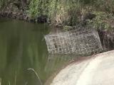 Un braconier din Vaslui a murit de frig după ce s-a ascuns timp de mai multe ore de paznici în apa rece ca gheața