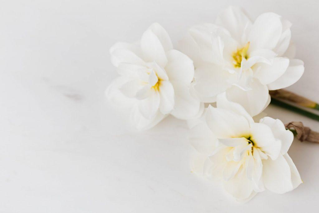 Buchete de flori și aranjamente florale de primăvară