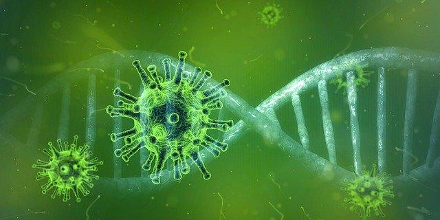 Bilanț coronavirus România. 6516 cazuri noi și 116 decese în ultimele 24 de ore