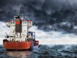 Cele 11 nave cu animale din România, blocate în Canalul Suez, au ajuns la destinaţie