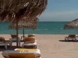 Ministrul de Interne a anunțat că de 1 Mai cluburile vor fi închise pe litoral